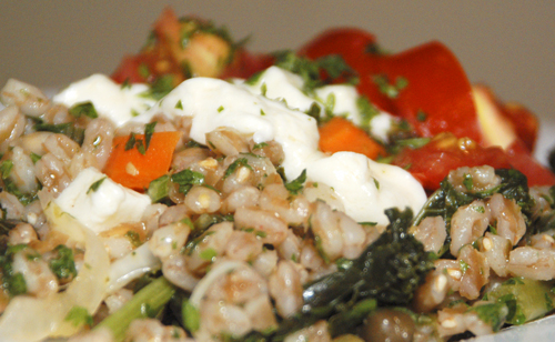 Farro with Kale, Tomatoes and Fresh Mozzarella
