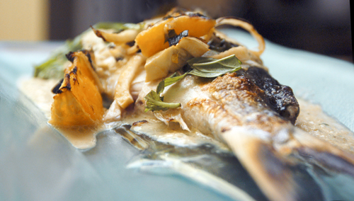 Black Bass with Fennel-Orange Cream