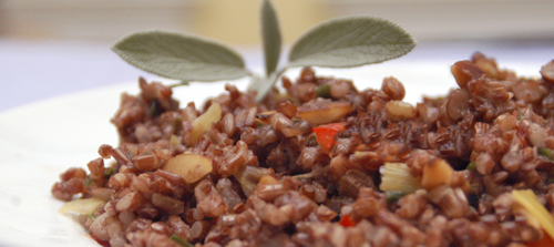 Camargue Red Rice with Almonds, Herbs and Braised Leeks