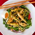 Asparagus Tempura Salad with Coconut-Peanut-Lime Dressing