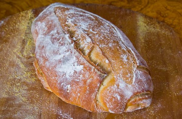 Ciabatta- crusty Italian bread